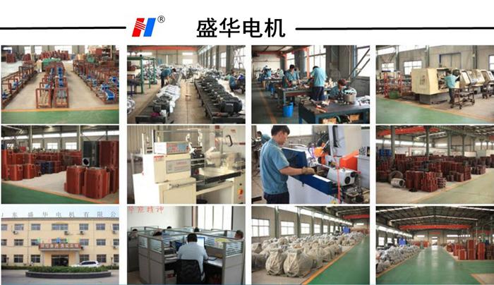 山东盛华变频电机生产厂家