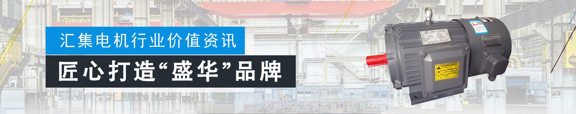 山东盛华电机厂,变频电机生产厂家