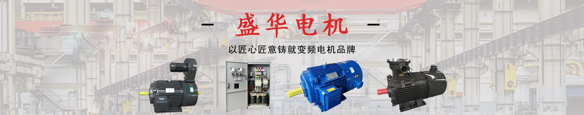 盛华电机专业变频电机生产厂家