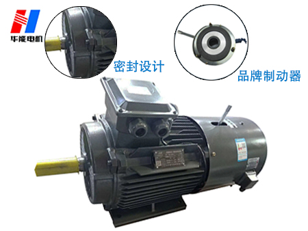 盛华-变频制动电机