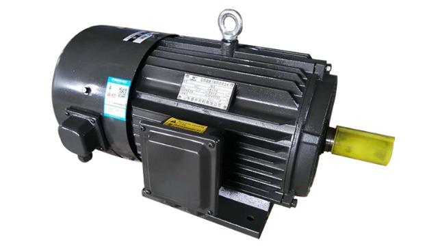 山东变频电机厂家|变频电机运行时出现啸叫声的原因与处理方法