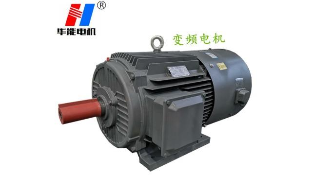 盘点变频电机你不知道的特点和优势_山东变频电机厂家
