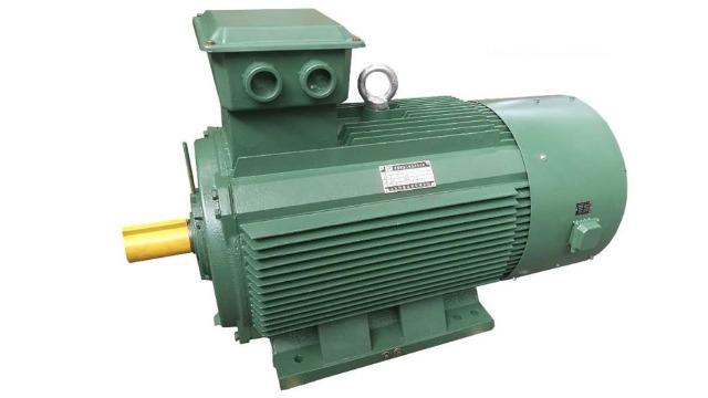 大功率高压电机对于端部的防护有哪些特殊要求?_大功率变频电机生产厂家