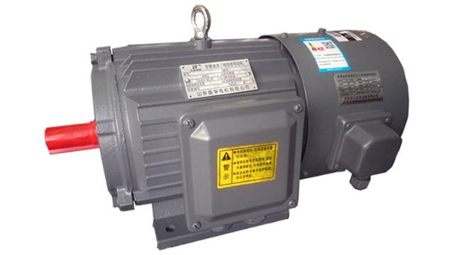 造成变频调速电机运行起热的原因有哪些?