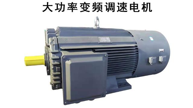 山东变频电机厂:大功率变频电机该如何定期检修?