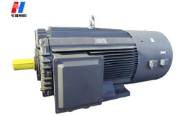 炼塑机专用电机