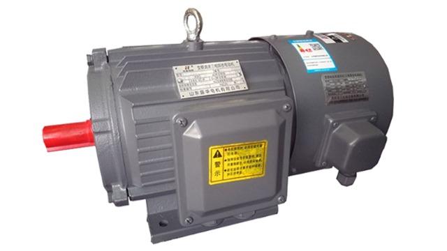 优质变频调速电机如何选择?(二)变频电机生产厂家