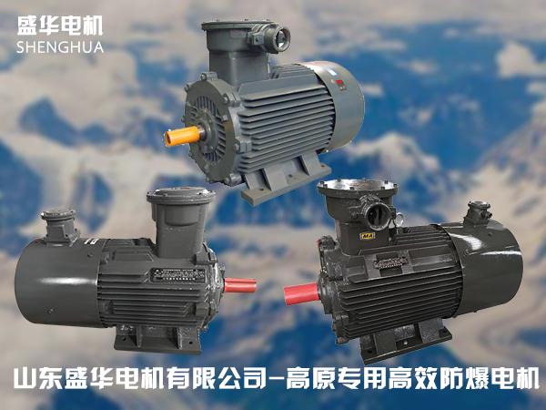 山东盛华高原专用高效率防爆电机