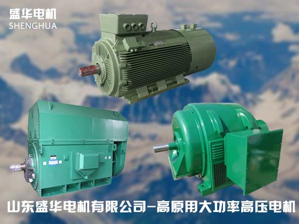 山东盛华高原专用大功率高压电机