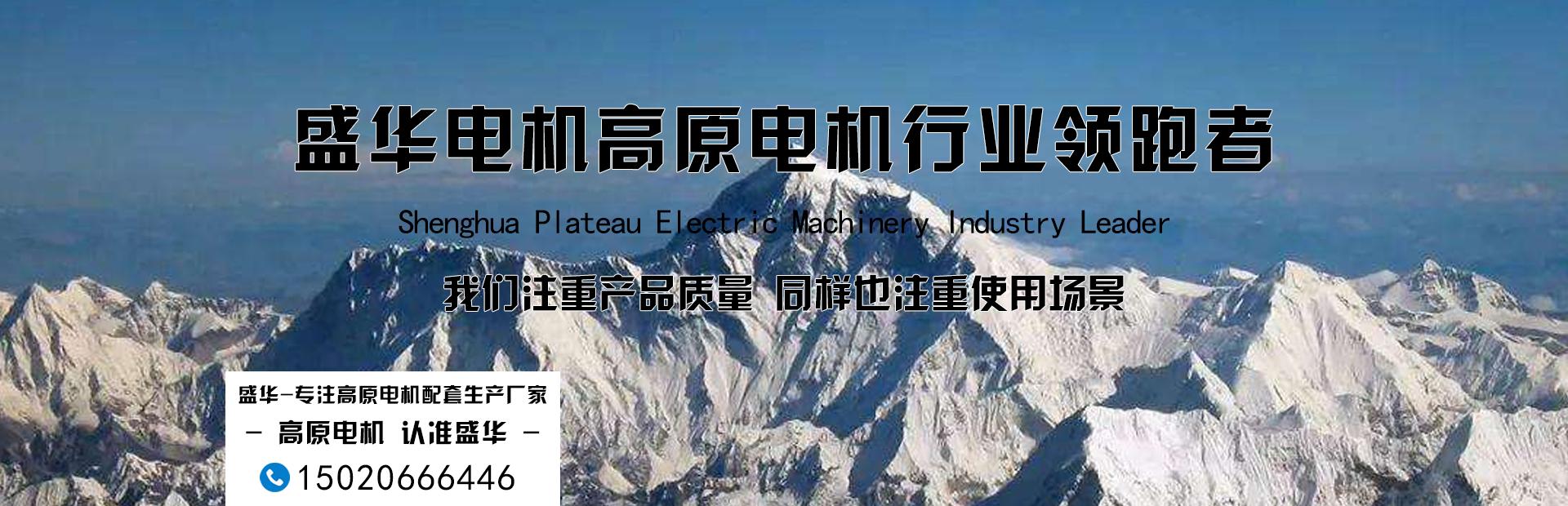 山东高原电机厂-专注高原电机生产十九年