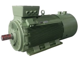 高原专用大功率高压电机