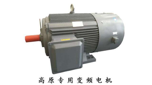 山东盛华电机厂推出高原专用电机定制服务