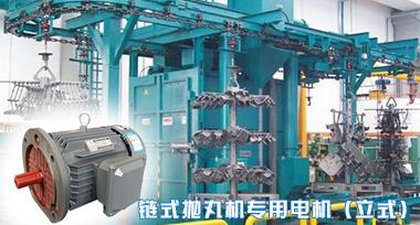 通过式抛丸机专用电机|抛丸机电机生产厂家|山东盛华电机厂家