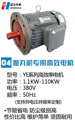 抛丸机专用高效电机|抛丸机电机|专用电机|抛丸机电机生产厂家|山东盛华电机生产厂家