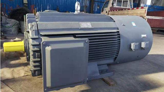 山东盛华电机厂家盘点电机防护等级的重要性