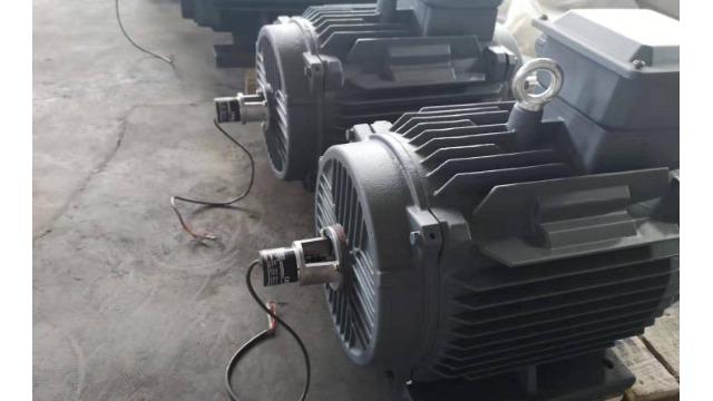 变频电机生产厂家盘点电机异常噪声
