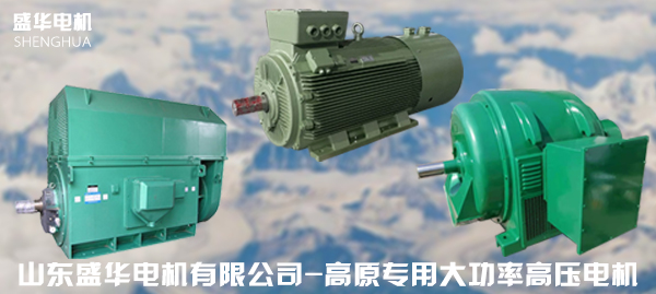 高原专用大功率电机