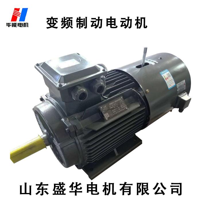 山东电机厂家-变频制动电机