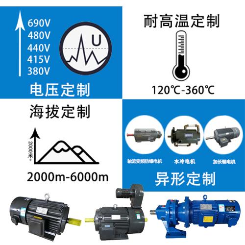 大功率变频电机生产厂家
