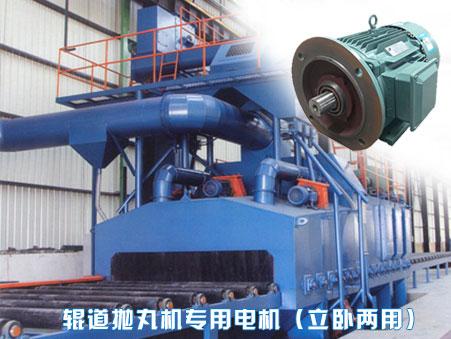 抛丸机专用电机生产厂家