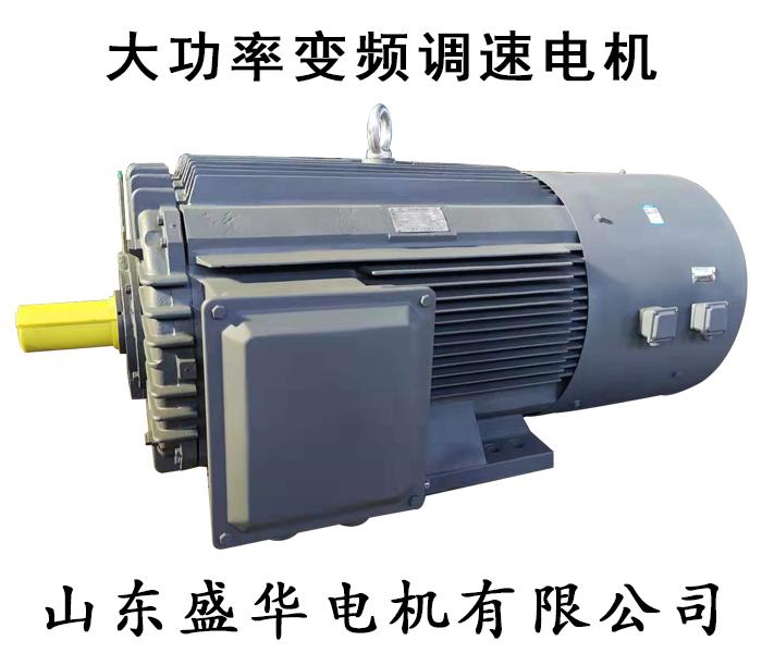 大功率高压变频电机