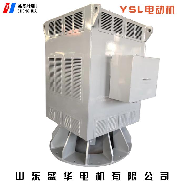 高压变频电机