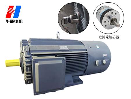 山东盛华-变频电机生产厂家
