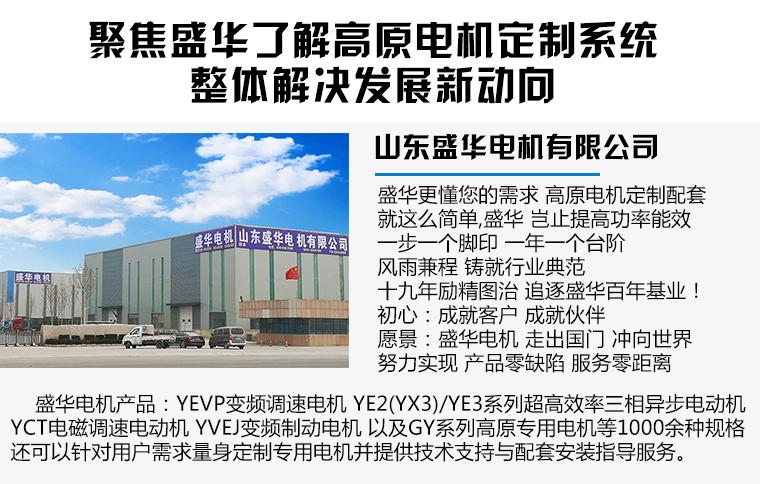 山东盛华-高原电机生产厂家