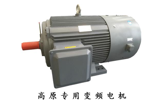高原专用变频电机