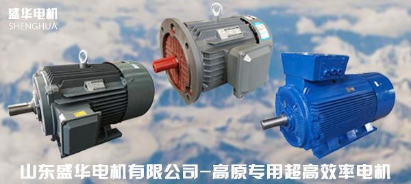 高原专用高效率电机
