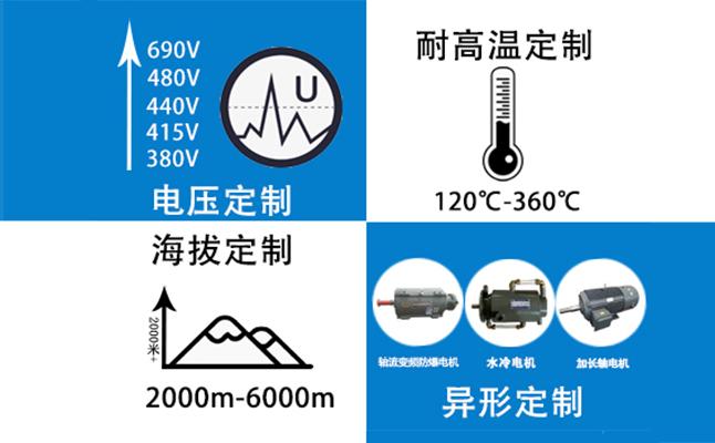 变频电机定制