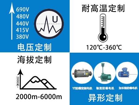 山东电机厂-变频防爆电机