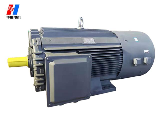山东盛华-大功率高压变频电机