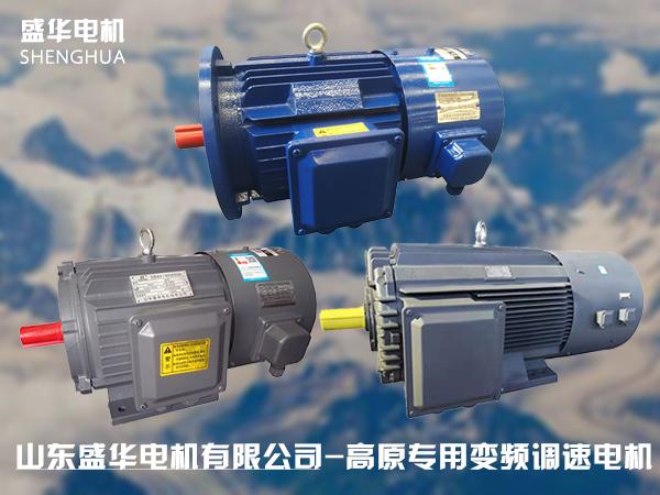山东盛华-高原变频电机