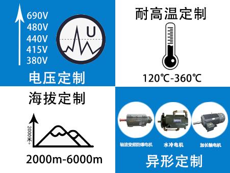 山东变频电机厂家-变频电机定制