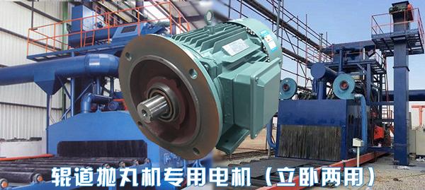 山东盛华辊道式抛丸机专用电机