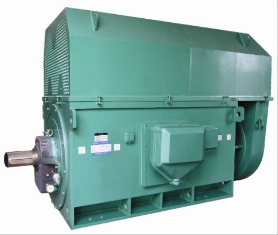山东盛华-大功率高压电机